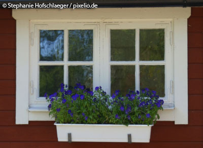 Skandinavischer wohnstil hell praktisch unkompliziert - Skandinavische fenster ...